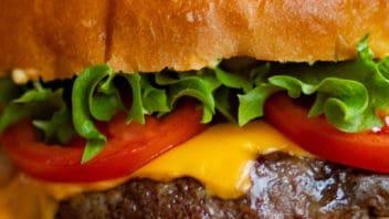 hamburger picture